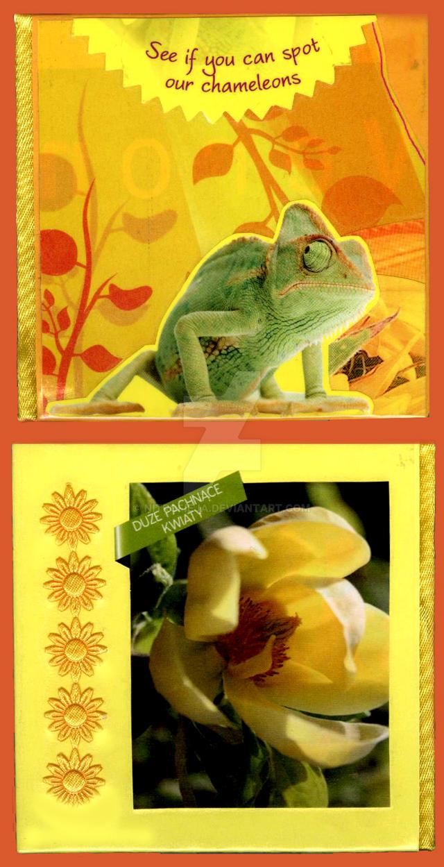 Chameleons by NitroFieja