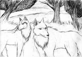 wolfes by himechan33