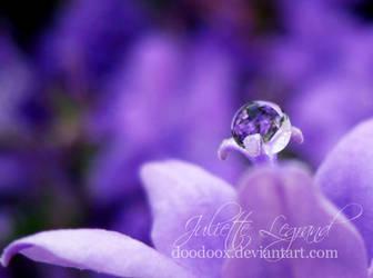 Purple dream by Doodoox