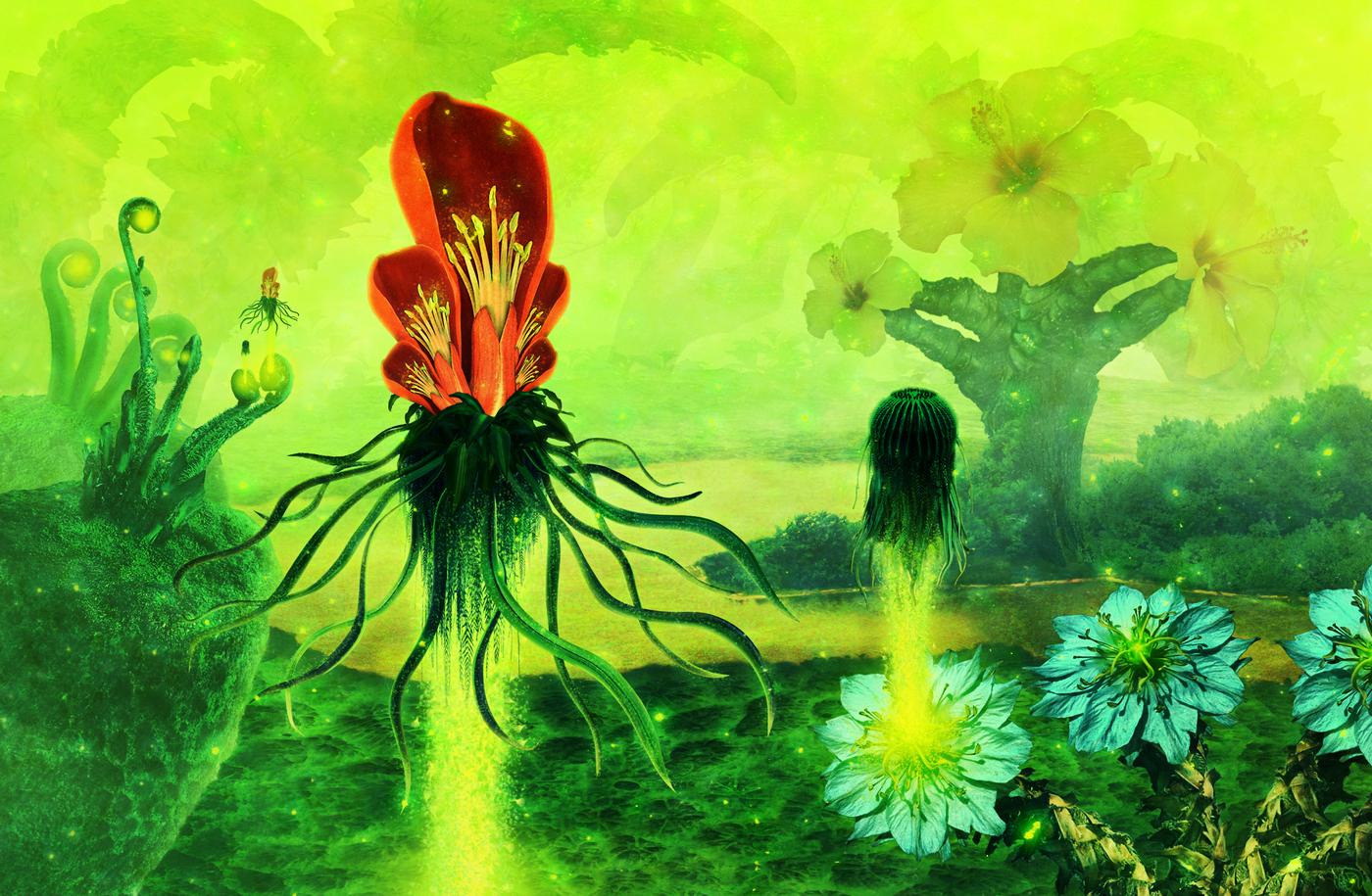 Botanica by lVlorf3us