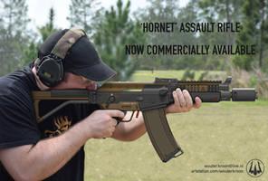 Hornet Assault Rifle - IRL