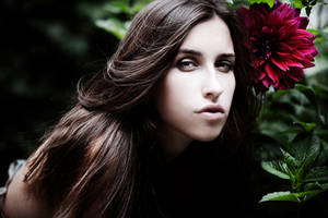 Katia_fall09_7 by MotyPest