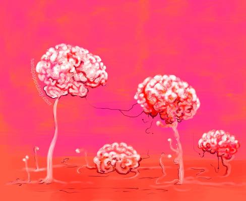 Brainforest