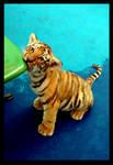 Siberian Tiger, Haerbin