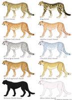 Cheetah Color Mutation Guide by ahillamon