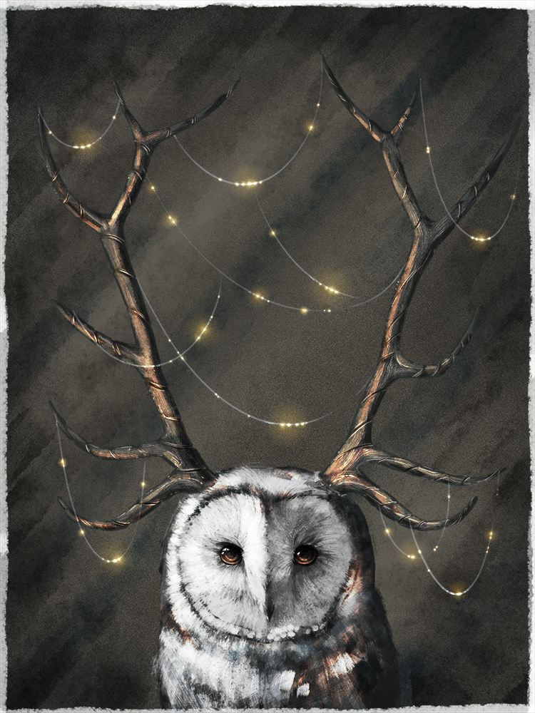 Owlish Finery