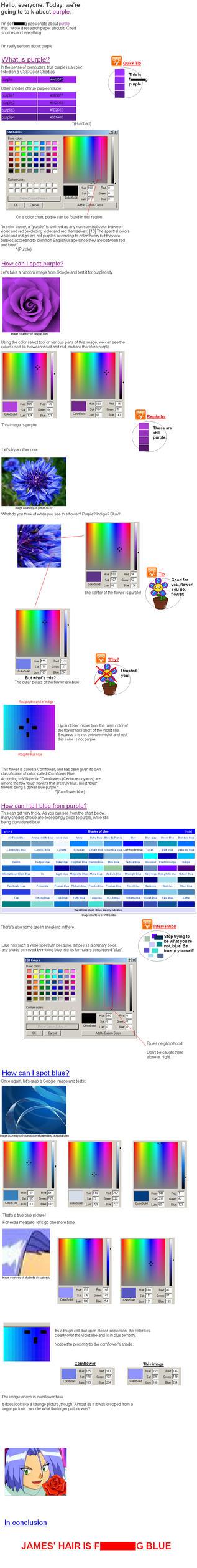 Purple Theory by SahKeyLuffsYew83