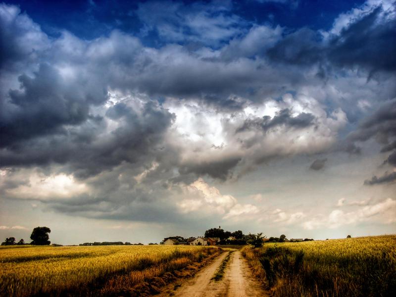 Country road II by Kaddayah