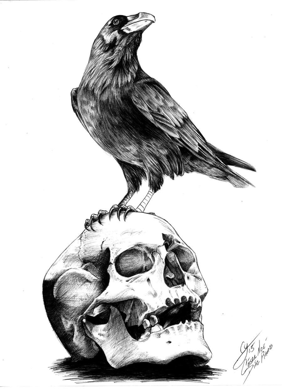 Populaire The Raven by Edgar Allan Poe by shuranegro on DeviantArt YI48