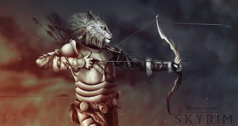 the elder scrolls v skyrim. Khajiit by zakevgeniy