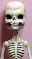 skeletonA02