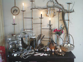 My Shelf of Oddities and Pieces by BleusBones