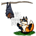Bat Foxes