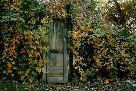 open the door.