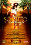 Sofrito Sat New Flyer