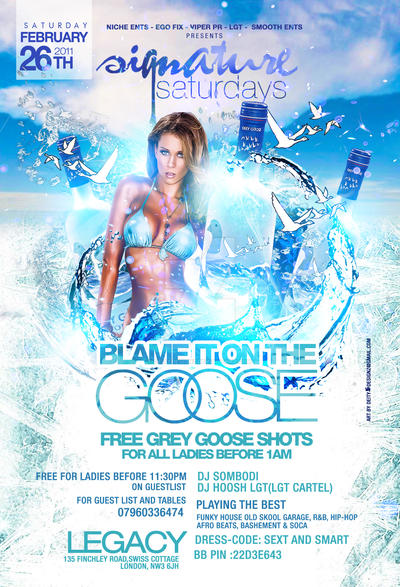 blame it on the goose flyer