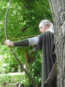 Elven Sight