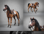 ZARBACH THE HORSE - POSEABLE ART DOLL
