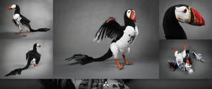 PUFFIN RAPTOR - POSEABLE ART DOLL