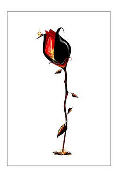 fire.rose