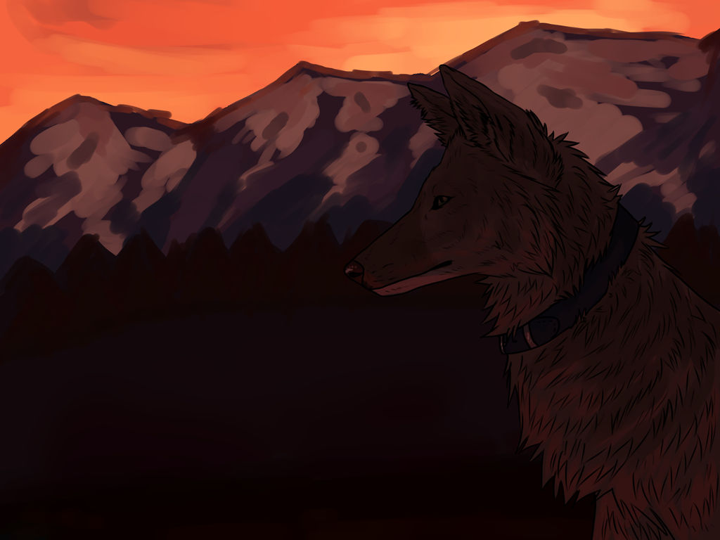 Sunset -Commission- by nihtgield