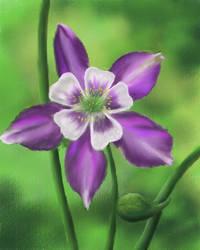 Digital Flower by TylersArtShack