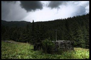 Crib by mokshaz by Ro-nature