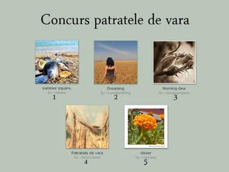Concurs Patratele de vara by Ro-nature