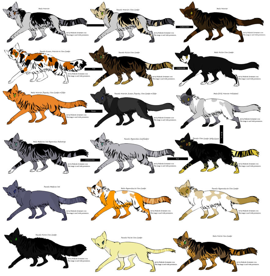 Warrior Cats Kit To Leader Bloodclan: Warrior- Adoptables 2 CLOSED By 24clans On DeviantArt