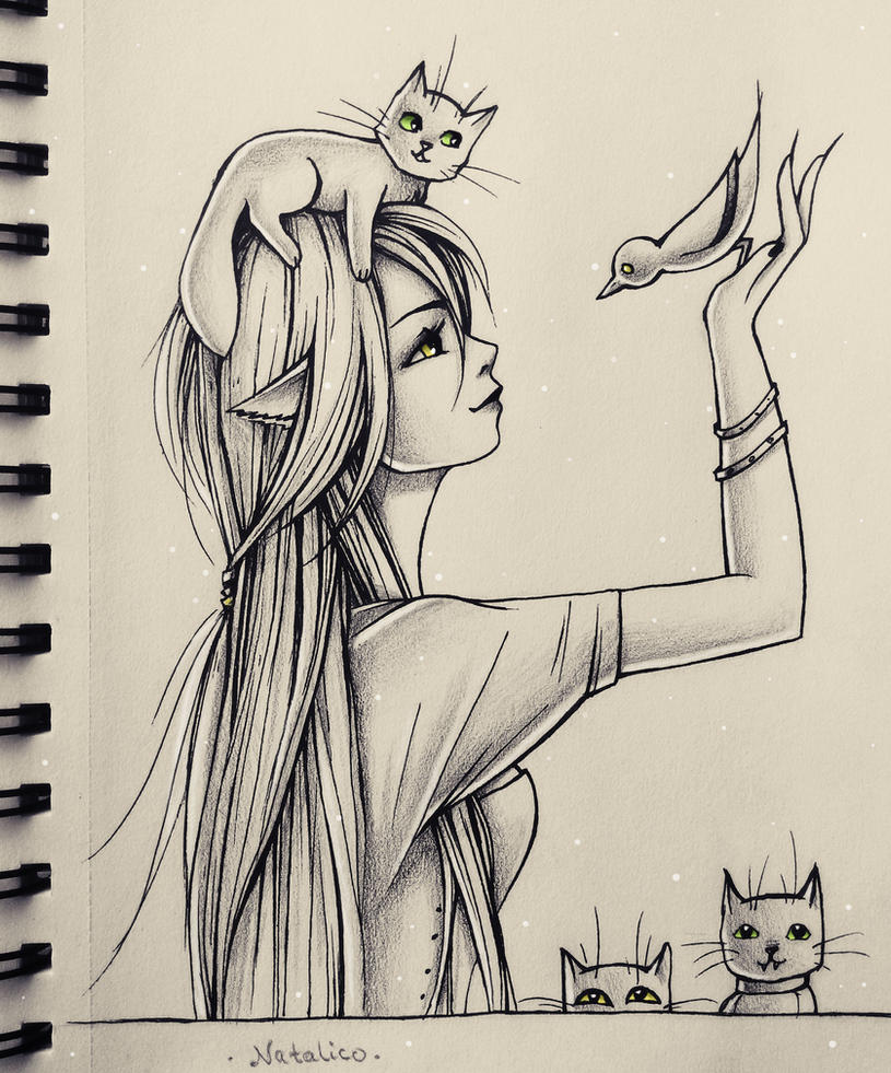 Amazing Drawings: Bird Among Cats By Natalico On DeviantArt