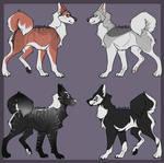 [2/4 OPEN] Huskies- PayPal flatsale