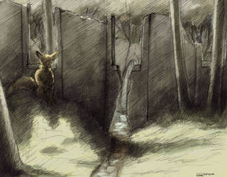 Fox Near Ruins in a Forest by Zethelius