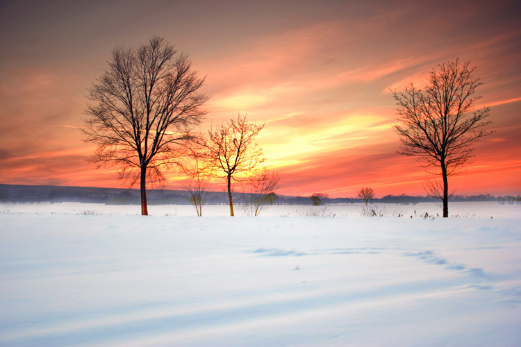 Sun Setting Winterscapes by Ssquared-Photography
