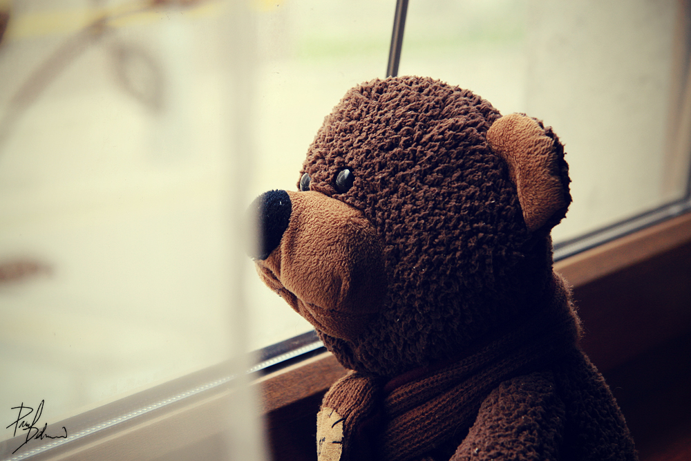 Alone Teddy by hombre-cz