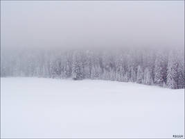 :: Snow and Fog :: by hombre-cz