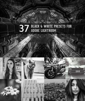 Black and White presets for Lightroom