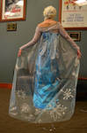 Frozen Elsa Cosplay Back