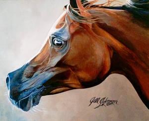 Face of an Arabian by GeorgiaHorsepainter