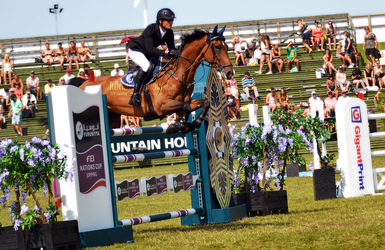 falsterbo chatrooms The latest tweets from falsterbo horse show (@falsterbohshow) falsterbo horse show, lika mycket horse som show 7-15 juli 2018 #falsterbo18 #falsterbohorseshow.