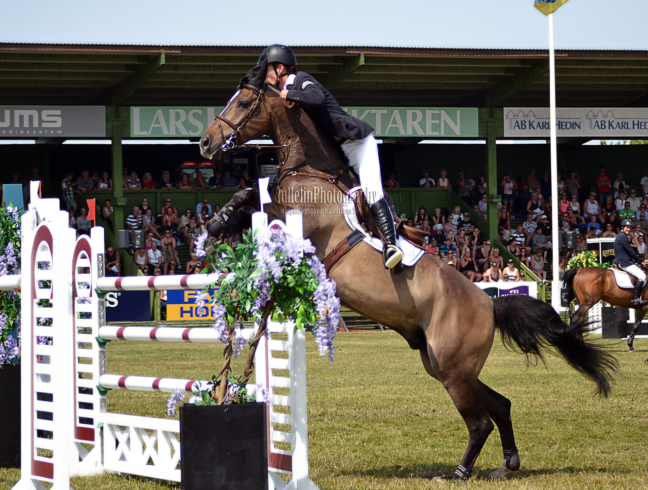 Show Jumping 45 by JullelinPhotography on DeviantArt