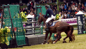 show jumping 119