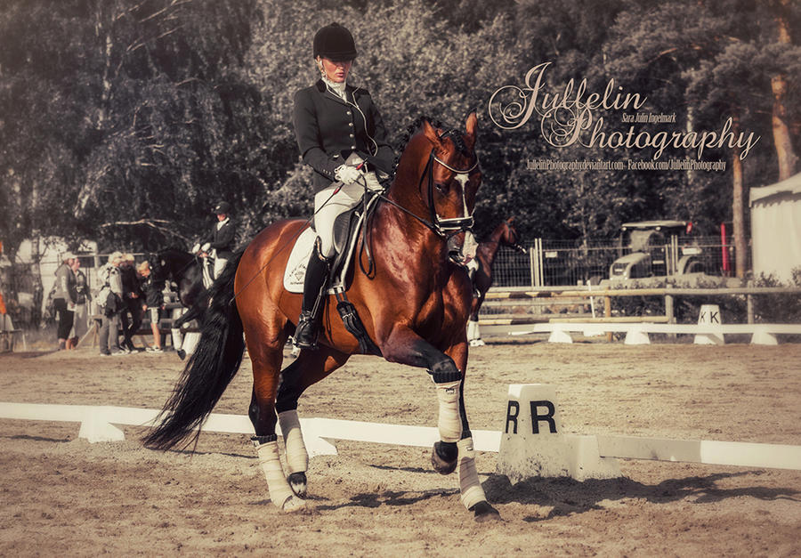 Dressage  48 by JullelinPhotography