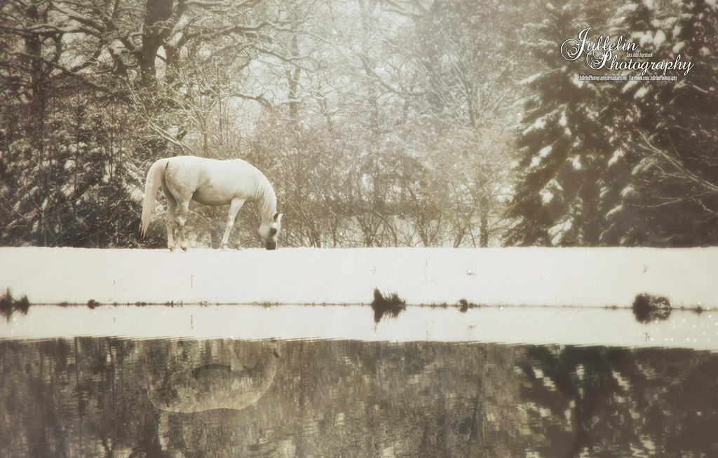 The Solitude by JullelinPhotography