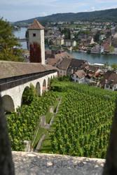 Schaffhausen from Munot by Scrutatrice