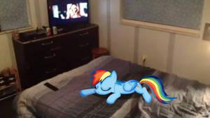Rainbow Dash is sleeping on his Bed
