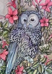 Original Watercolor Ink Owl Painting by vangelija