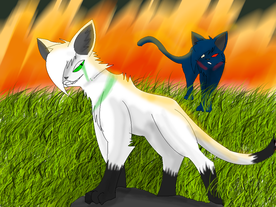 Shadowclaw vs shadowfrost by ShadowClawZ