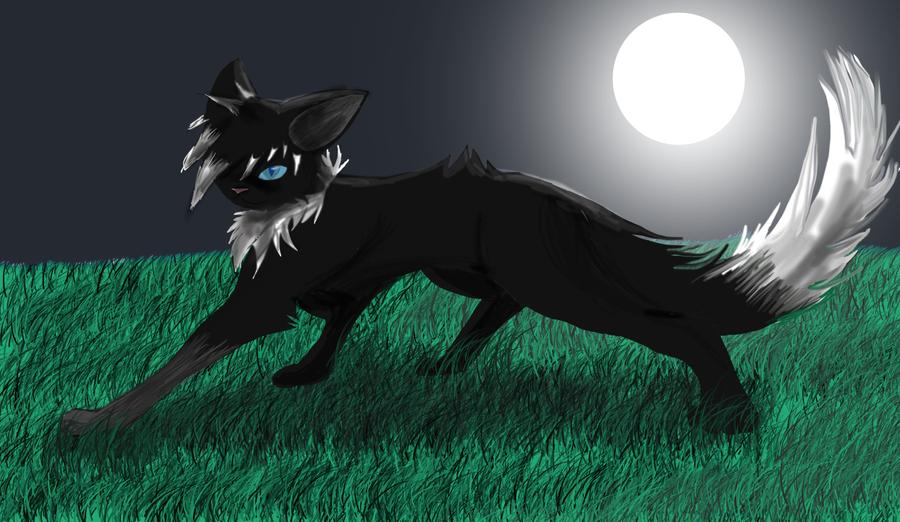 Nightshade by ShadowClawZ