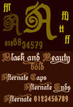 New Font Black and Beauty1 by yourenemy