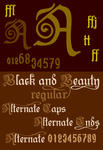 New Font Black and Beauty3 by yourenemy